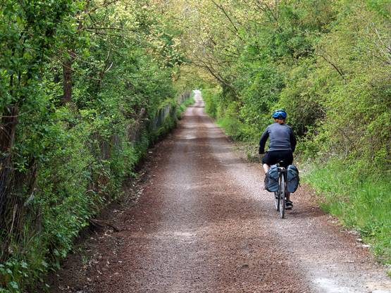 Peregrino de bicicleta